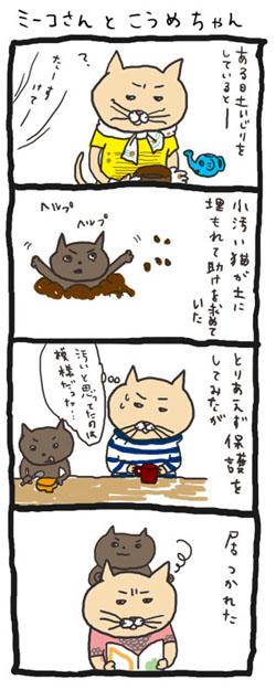 060215-meeko.jpg